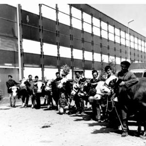 La-Foire-de-Grenoble-dans-les-annees-70